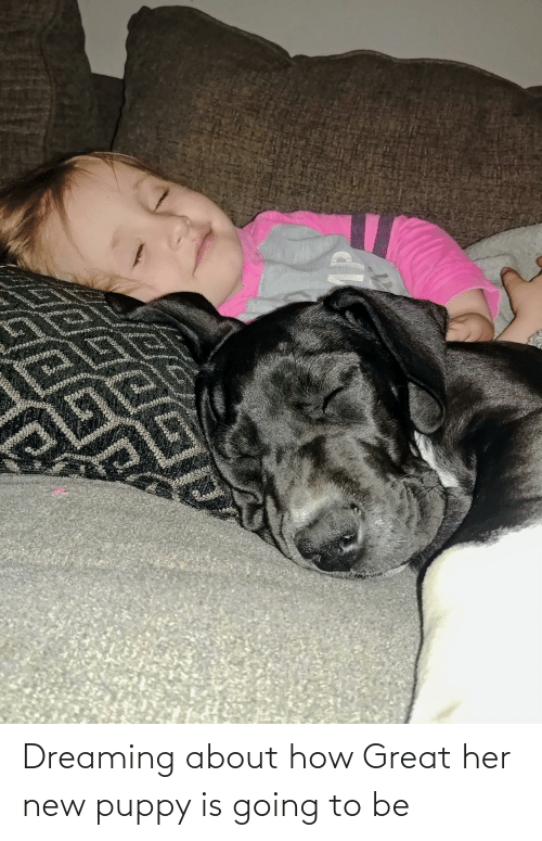 dreaming: Dreaming about how Great her new puppy is going to be