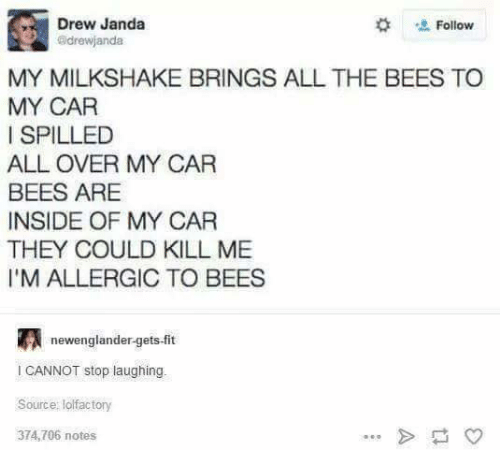Funny, All The, and Bees: Drew Janda  Follow  adrewjandat  MY MILKSHAKE BRINGS ALL THE BEES TO  MY CAR  I SPILLED  ALL OVER MY CAR  BEES ARE  INSIDE OF MY CAR  THEY COULD KILL ME  l'M ALLERGIC TO BEES  newenglandergets-fit  l CANNOT stop laughing  Source: lolfactory  374,706 notes