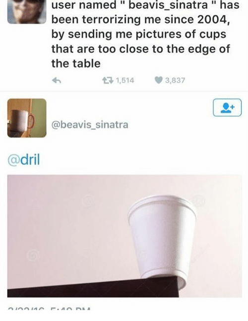 Beavies: dril  user named beavis sinatra has  been terrorizing me since 2004,  by sending me pictures of cups  that are too close to the edge of  the table  t 1,514  3,837  @beavis sinatra