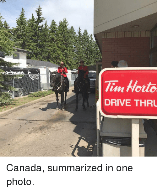 Funny, Canada, and Drive: DRIVE THRU