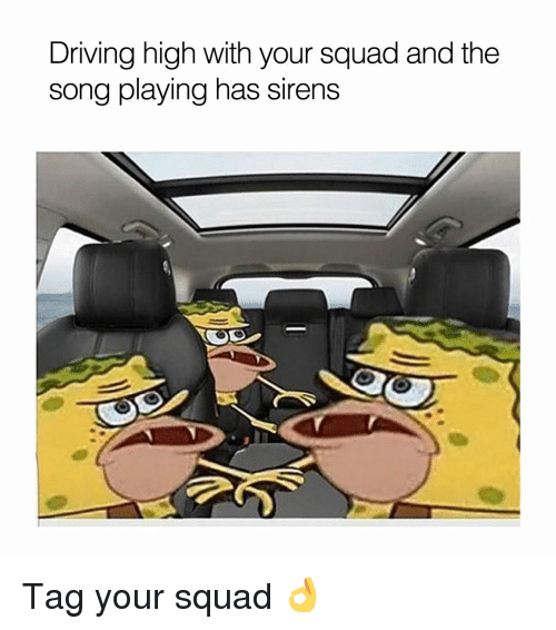 Sirening: Driving high With your Squad and the  song playing has sirens Tag your squad 👌