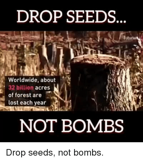 Memes, 🤖, and Forest: DROP SEEDS  Worldwide, about  32 billion acres  of forest are  lost each year  a  NOT BOMBS Drop seeds, not bombs.