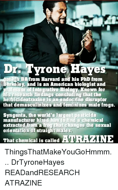 syngenta: Drr Tyrone Haves  s BAfrom Harvard and his PhD from  Berkeley, and is an American biologist and  ogy. Known for  research findings concluding that the  herbicideatrazine is an endocrine disruptor  that demasculinizes and feminizes male frogs.  Syngenta, the world's largest pesticide  manufacturer hired hiu to ind a chemical  extracted from a iror that cChanges the sexual  orientation of straight males  That chemical is called ATRAZINE ThingsThatMakeYouGoHmmm... DrTyroneHayes READandRESEARCH ATRAZINE