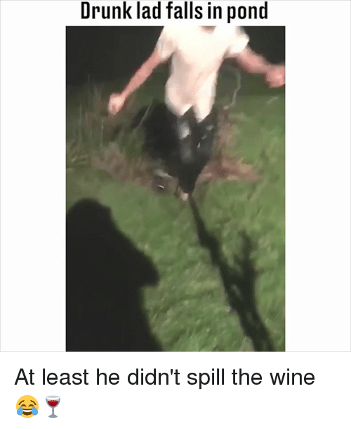 Drunk, Memes, and Wine: Drunk lad falls in pond At least he didn't spill the wine 😂🍷