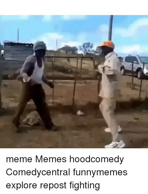 Meme, Memes, and 🤖: ds meme Memes hoodcomedy Comedycentral funnymemes explore repost fighting