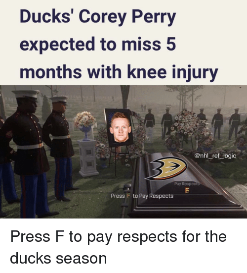 knee injury: Ducks' Corey Perry  expected to miss 5  months with knee injury  @nhl_ref_logic  Pay Respec  Press F to Pay Respects Press F to pay respects for the ducks season