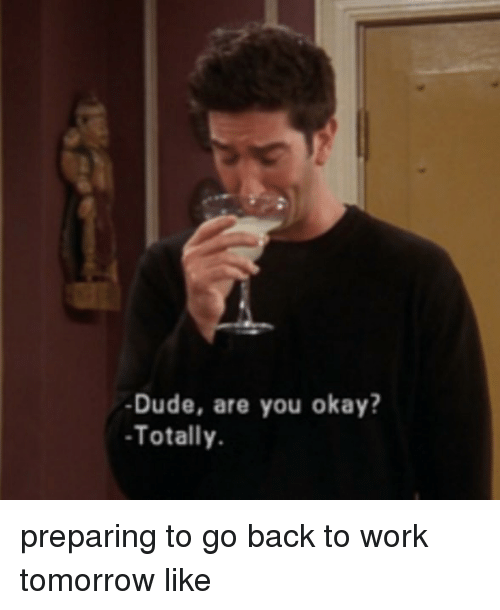 Dude, Memes, and Work: -Dude, are you okay?  Totally preparing to go back to work tomorrow like
