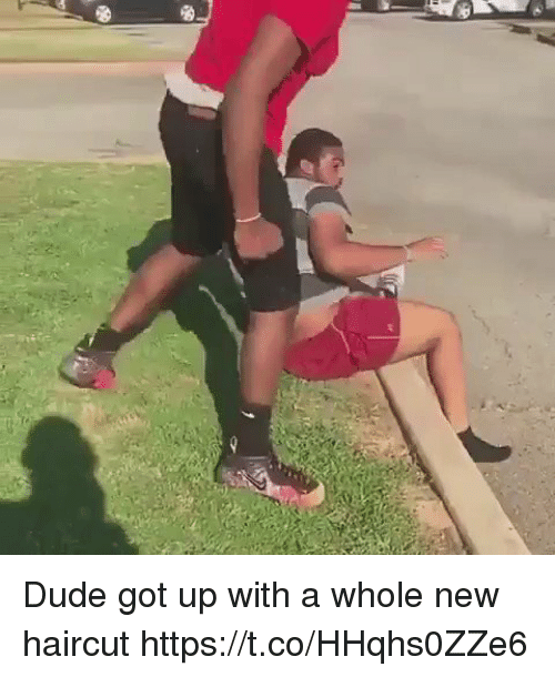 Blackpeopletwitter, Dude, and Haircut: Dude got up with a whole new haircut https://t.co/HHqhs0ZZe6