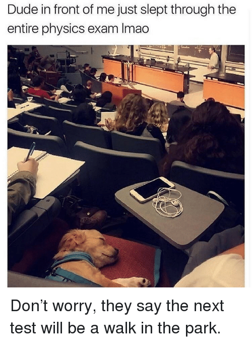 walk in the park: Dude in front of me just slept through the  entire physics exam Imao <p>Don't worry, they say the next test will be a walk in the park.</p>