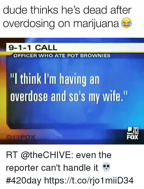 "Dude, Marijuana, and Wife: dude thinks he's dead after  overdosing on marijuana  9-1-1 CALL  OFFICER WHO ATE POT BROWNIES  ""I think I'm having an  overdose and so's my wife,""  FOX RT @theCHIVE: even the reporter can't handle it 💀 #420day https://t.co/rjo1miiD34"