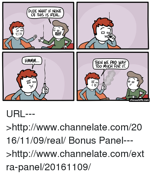 Dude, Memes, and Too Much: DUDE WHAT IF NONE  OF THIS IS REAL.  HMMM  O Ca  THEN WE PAID WAY  TOO MUCH FOR IT  e  channelate.com URL--->http://www.channelate.com/2016/11/09/real/ Bonus Panel--->http://www.channelate.com/extra-panel/20161109/