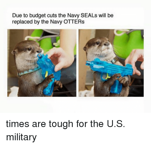 Military: Due to budget cuts the Navy SEALs will be  replaced by the Navy OTTERs times are tough for the U.S. military