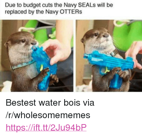 "Otters: Due to budget cuts the Navy SEALs will be  replaced by the Navy OTTERs <p>Bestest water bois via /r/wholesomememes <a href=""https://ift.tt/2Ju94bP"">https://ift.tt/2Ju94bP</a></p>"