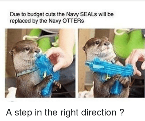 Otters: Due to budget cuts the Navy SEALs will be  replaced by the Navy OTTERs A step in the right direction ?