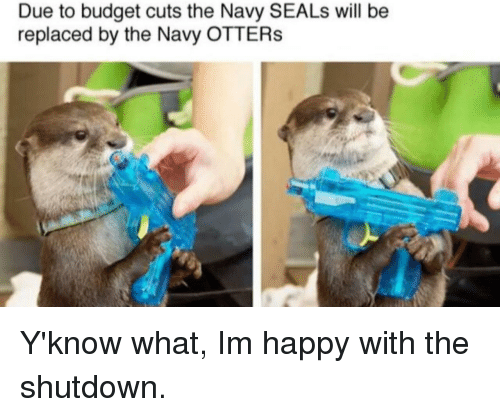 Otters: Due to budget cuts the Navy SEALs will be  replaced by the Navy OTTERs Y'know what, Im happy with the shutdown.