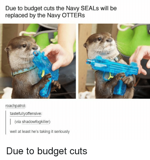 Otters, Budget, and Navy: Due to budget cuts the Navy SEALs will be  replaced by the Navy OTTERS  roachpatrol  tastefullyoffensive:  (via shadowfogkiller)  well at least he's taking it seriously Due to budget cuts