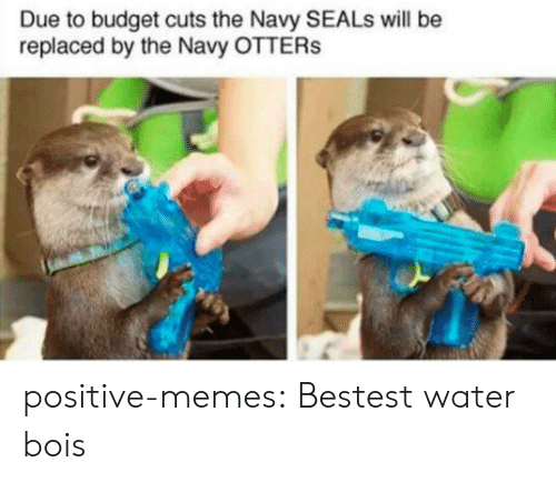 Otters: Due to budget cuts the Navy SEALs will be  replaced by the Navy OTTERs positive-memes:  Bestest water bois