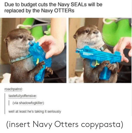 Otters: Due to budget cuts the Navy SEALs will be  replaced by the Navy OTTERs  roachpatrol:  tastefullyoffensive:  (via shadowfogkiller)  well at least he's taking it seriously (insert Navy Otters copypasta)