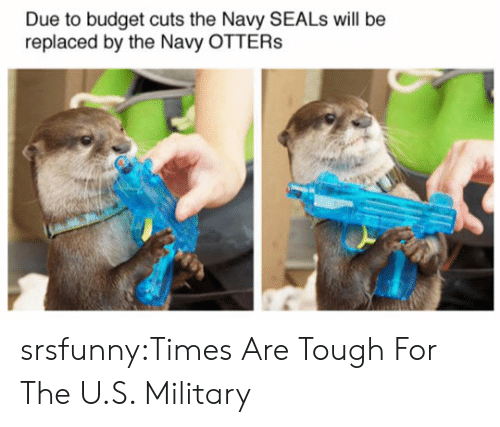 Otters: Due to budget cuts the Navy SEALs will be  replaced by the Navy OTTERs srsfunny:Times Are Tough For The U.S. Military