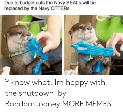 Otters: Due to budget cuts the Navy SEALs will be  replaced by the Navy OTTERs Y'know what, Im happy with the shutdown. by RandomLooney MORE MEMES