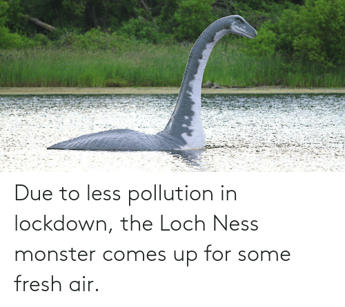Due: Due to less pollution in lockdown, the Loch Ness monster comes up for some fresh air.