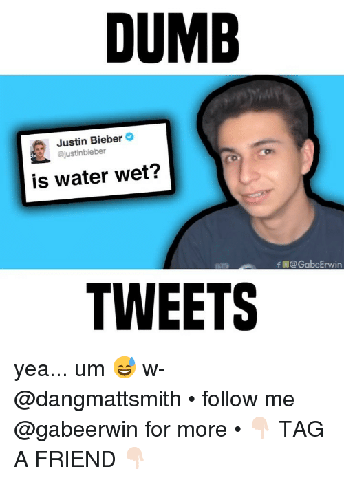 Dumb, Justin Bieber, and Memes: DUMB  Justin Bieber  @justinbieber  is water wet?  f@GabeErwin  TWEETS yea... um 😅 w- @dangmattsmith • follow me @gabeerwin for more • 👇🏻 TAG A FRIEND 👇🏻