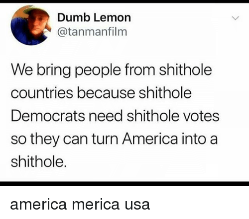 America, Dumb, and Memes: Dumb Lemon  @tanmanfilm  We bring people from shithole  countries because shithole  Democrats need shithole votes  so they can turn America intoa  shithole. america merica usa