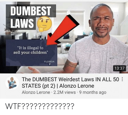 """Alonzo Lerone: DUMBEST  LAWS  """"It is illegal to  sell your children""""  FLORIDA  13:37  The DUMBEST Weirdest Laws IN ALL 50  STATES (pt 2) 