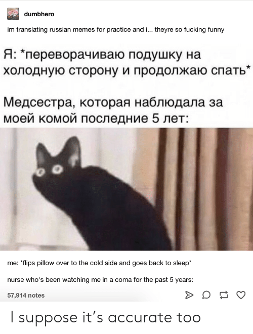 "i suppose: dumbhero  im translating russian memes for practice and ... theyre so fucking funny  Я: ""переворачиваю подушку на  холодную сторону и продолжаю спать""  Медсестра, которая наблюдала за  моей комой последние 5 лет:  me: *flips pillow over to the cold side and goes back to sleep*  nurse who's been watching me in a coma for the past 5 years:  57,914 notes I suppose it's accurate too"