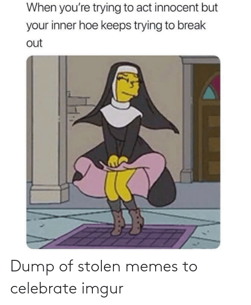 celebrate: Dump of stolen memes to celebrate imgur