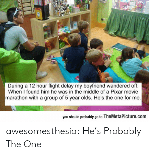 delay: During a 12 hour flight delay my boyfriend wandered off.  When I found him he was in the middle of a Pixar movie  marathon with a group of 5 year olds. He's the one for me  you should probably go to TheMetaPicture.com awesomesthesia:  He's Probably The One