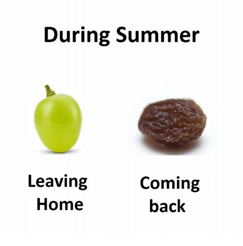 Summer, Home, and Back: During Summer  Leaving  Coming  back  Home