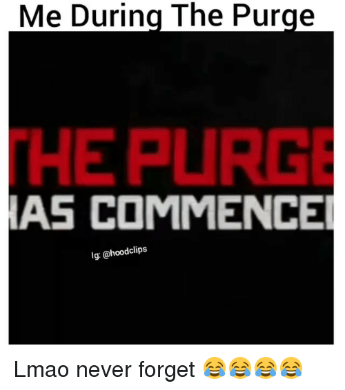purging: During The Purge  Me HEPURGE  AS COMMENCE  lg: @hoodclips Lmao never forget 😂😂😂😂