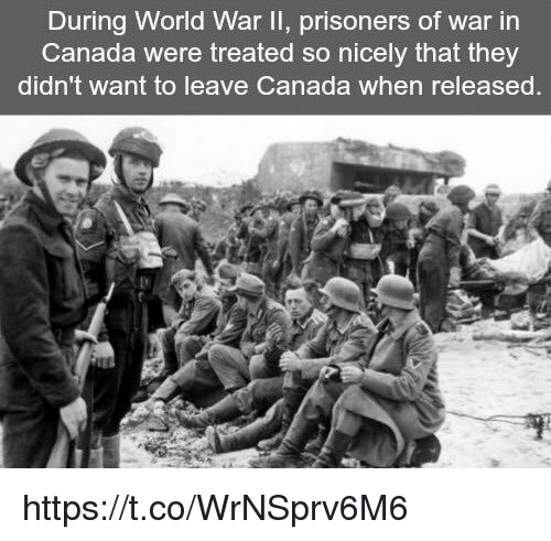 canada during world war i Jewish refugees in the 1930's  only after the second world war did canada begin to  the percentage of jews entering canada before and during the great.
