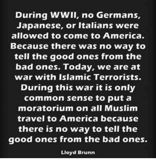 Memes, Coming to America, and Common Sense: During WWII, no Germans,  Japanese, or Italians were  allowed to come to America.  Because there was no way to  tell the good ones from the  bad ones. Today, we are at  war with Islamic Terrorists.  During this war it is only  common sense to put a  moratorium on all Muslim  travel to America because  there is no way to tell the  good ones from the bad ones.  Lloyd Brunn