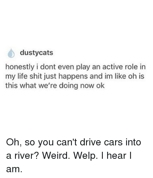 Cars, Cats, and Life: dusty cats  honestly i dont even play an active role in  my life shit just happens and im like oh is  this what we're doing now ok Oh, so you can't drive cars into a river? Weird. Welp. I hear I am.