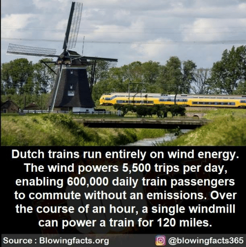 Passengers: Dutch trains run entirely on wind energy  The wind powers 5,500 trips per day,  enabling 600,000 daily train passengers  to commute without an emissions. Over  the course of an hour, a single windmill  can power a train for 120 miles.  Source Blowingfacts.org  O@blowingfacts365