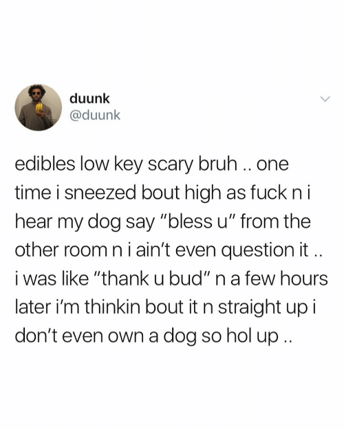"""Bruh, Low Key, and Fuck: duunk  @duunk  edibles low key scary bruh.. one  time i sneezed bout high as fuck n i  hear my dog say """"bless u"""" from the  other room n i ain't even question it  i was like """"thank u bud"""" n a few hours  later i'm thinkin bout it n straight up i  don't even own a dog so hol up"""