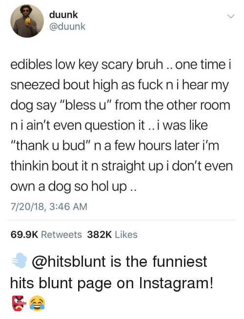 """nol: duunk  @duunk  edibles low key scary bruh ..one time i  sneezed bout high as fuck ni hear my  dog say """"bless u"""" from the other room  n i ain't even question it..i was like  """"thank u bud"""" n a few hours later i'm  thinkin bout it n straight up i don't even  own a dog so nol up  7/20/18, 3:46 AM  69.9K Retweets 382K Likes 💨 @hitsblunt is the funniest hits blunt page on Instagram! 👺😂"""