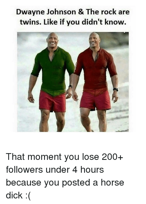 Dwayne Johnson, Horses, and Memes: Dwayne Johnson & The rock are  twins. Like if you didn't know. That moment you lose 200+ followers under 4 hours because you posted a horse dick :(