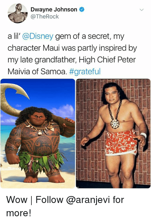 Disney, Dwayne Johnson, and Memes: Dwayne Johnson  @TheRock  a lil' @Disney gem of a secret, my  character Maui was partly inspired by  my late grandfather, High Chief Peter  Maivia of Samoa·#grateful Wow | Follow @aranjevi for more!
