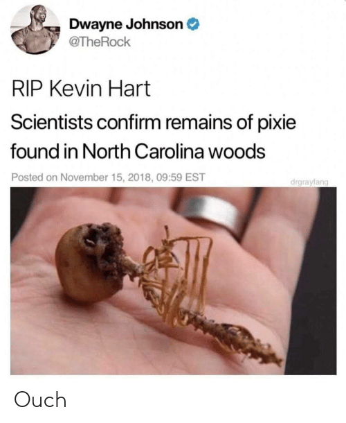 Dwayne Johnson: Dwayne Johnson  @TheRock  RIP Kevin Hart  Scientists confirm remains of pixie  found in North Carolina woods  Posted on November 15, 2018, 09:59 EST  drgrayfang Ouch