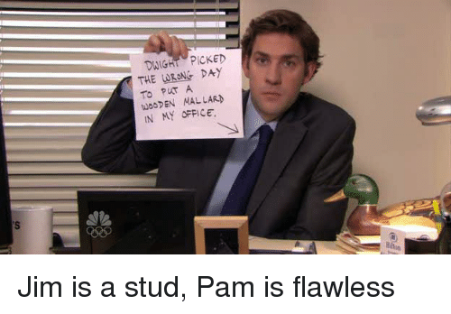 DWIGHT PICKED TO PUT a WOODEN MAL LARN IN MY OFFICE Jim Is a