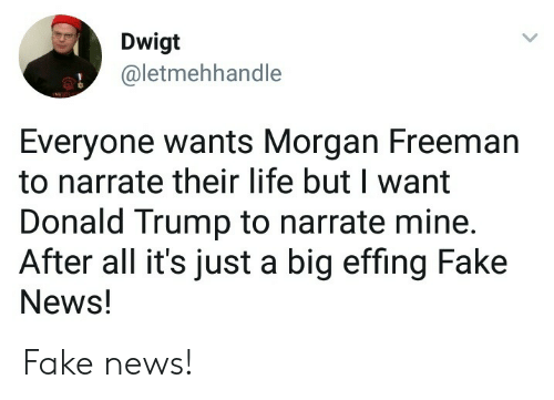 Narrate: Dwigt  @letmehhandie  Everyone wants Morgan Freeman  to narrate their life but I want  Donald Trump to narrate mine  After all it's just a big effing Fake  News! Fake news!