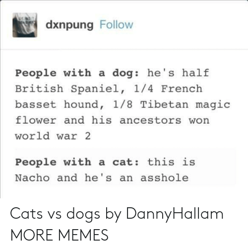 nacho: dxnpung Follow  People with a dog: he's half  British Spaniel, 1/4 French  basset hound, 1/8 Tibetan magic  flower and his ancestors won  world war 2  People with a cat: this is  Nacho and he's an asshole Cats vs dogs by DannyHallam MORE MEMES