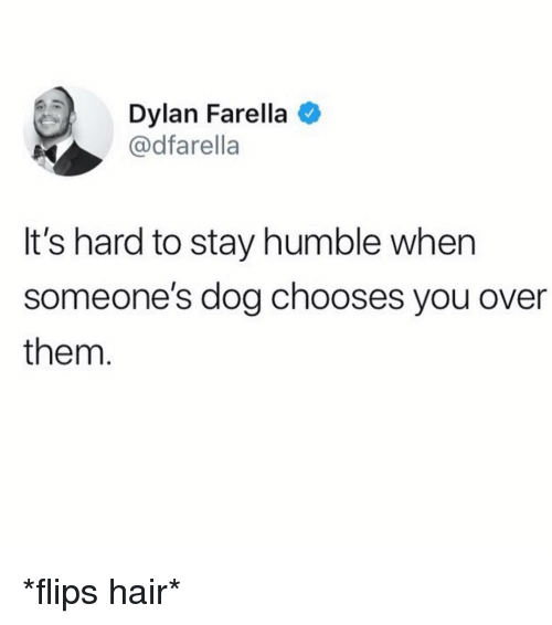 Stay Humble: Dylan Farella  @dfarella  It's hard to stay humble when  someone's dog chooses you over  them *flips hair*