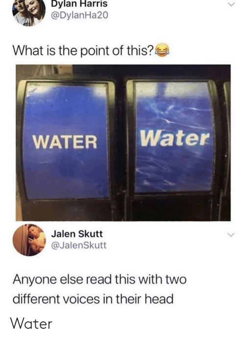 dylan: Dylan Harris  @DylanHa20  What is the point of this?  Water  WATER  Jalen Skutt  @JalenSkutt  Anyone else read this with two  different voices in their head Water 𝒲𝒶𝓉𝑒𝓇
