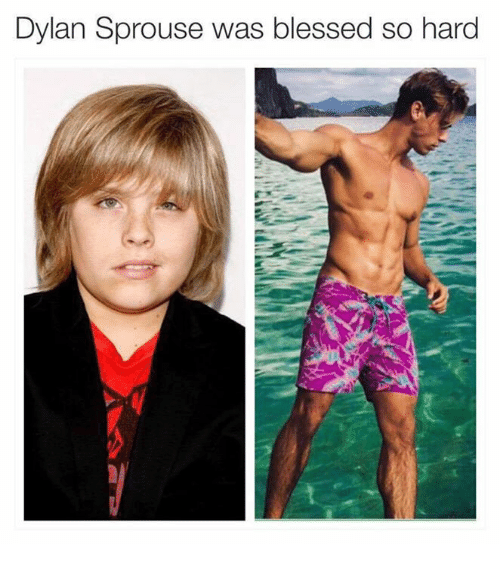 Funny Dylan Sprouse Memes of 2017 on SIZZLE | Cole M Sprouse