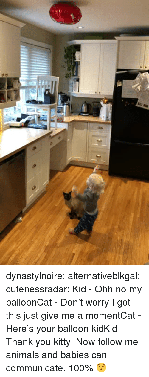 balloon: dynastylnoire:  alternativeblkgal:   cutenessradar: Kid - Ohh no my balloonCat - Don't worry I got this just give me a momentCat - Here's your balloon kidKid - Thank you kitty, Now follow me  animals and babies can communicate. 100%   😯