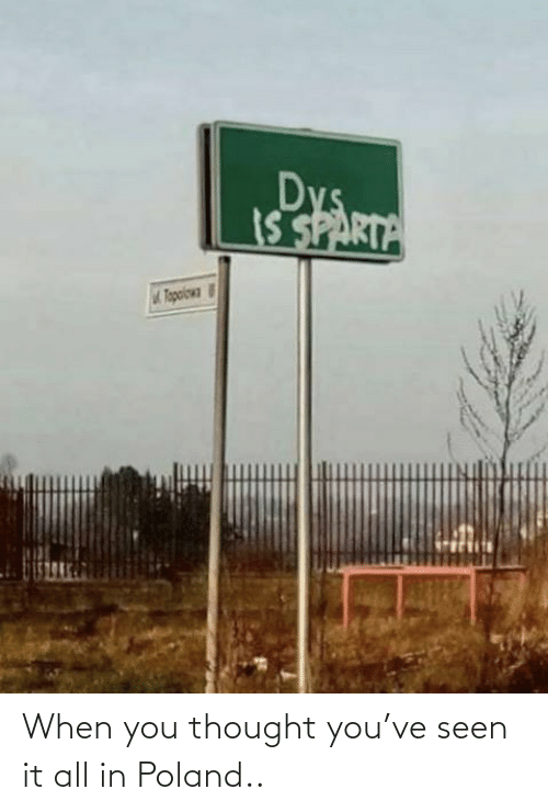 dys: Dys  IS SPARTA  Tapoiowa When you thought you've seen it all in Poland..